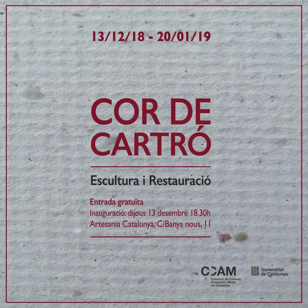 Foam COR DE CARTRÓsmall